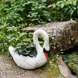 Swan Planter - RRP230.00